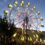 LS Fair